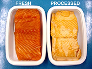Fresh and Processed Salmon